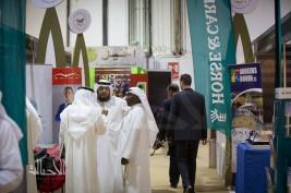 الفعاليات الترفيهية في معرض دبي الدولي للخيل 2015 تجتذب آلاف الزوار من جميع الجنسيات