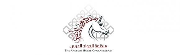 تنطلق اليوم بطولة جمال الخيل العربية سعودية الأصل والمنشأ والمارثون ضمن فعاليات سوق عكاظ