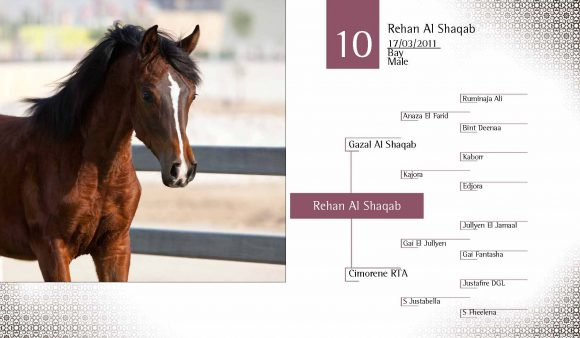 Auction2012-CATALOG(high)_Page_19