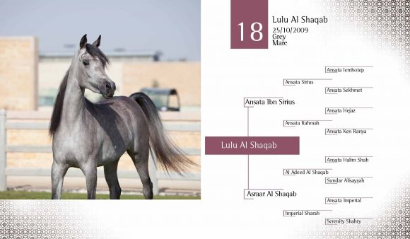 Auction2012-CATALOG(high)_Page_27