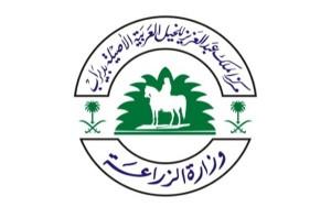 مركز الملك عبدالعزيز بديراب