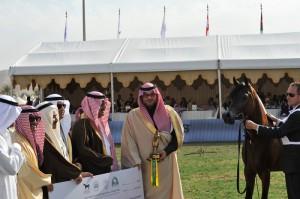 رازي الخالدية والعائد لصاحب السمو الملكي الأمير خالد بن سلطان بن عبدالعزيز