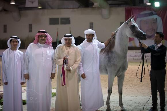 دي ثريا – مربط دبي