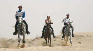رماح تحتضن السباق التأهيلي لبطولة مربط المحمدية لماراثون الخيل العربية الأصيلة