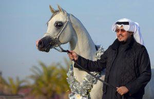 سمو الشيخ حمد خالد الحمد الصباح ممثلاً للكويت لدى (الإيكاهو)