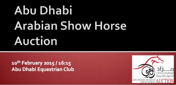 قائمة مزاد ابوظبي لجمال الخيول العربية ٢٠١٥