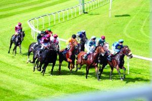 الإمارات تستضيف «تنفيذية» الاتحاد الدولي لسباقات الخيول العربية