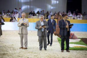 «دبي الدولية للجواد العربي ٢٠١٧» تدعوا الملاك لحضور قرعة اختيار الحكام