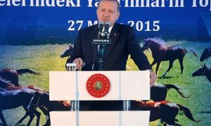 أمير دولة قطر يهدي الرئيس التركي أردوغان 53 من الخيل العربية الأصيلة
