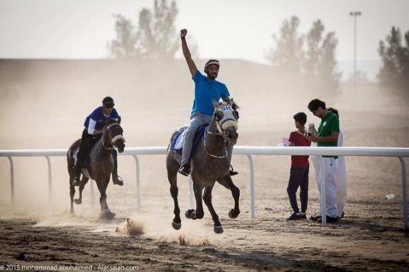 ماراثون الأصيل للخيل العربية الأصيلة
