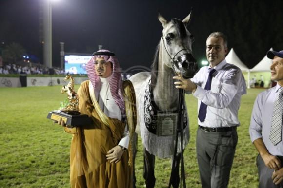 22الصواري مكة المكرم جدة -