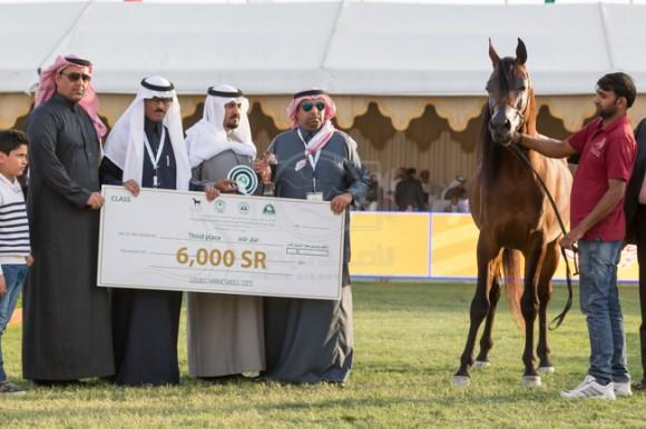 بطولة مركز الملك عبدالعزيز 001A8698