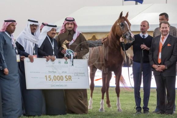 بطولة مركز الملك عبدالعزيز 001A9087