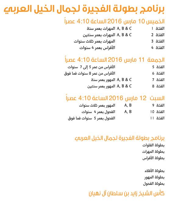 برنامج البطولة