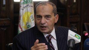 رفع حظر تصدير مصر للخيول العربية جزئيا !