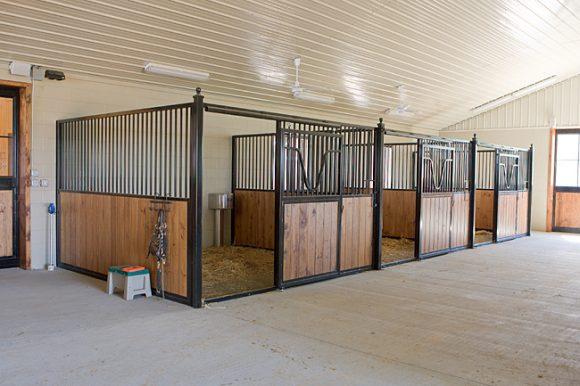 HorseStall-6501