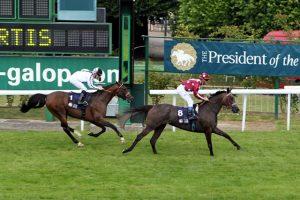 الخيول العربية تتنافس في سباق تحمل بفرنسا