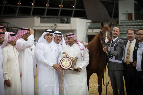 أبها قطر (مروان الشقب x زد تي لودكالبا) مربط المحمدية