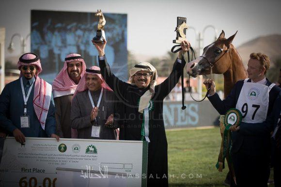 صور مقتطفة من اليوم الختامي لبطولة مركز الملك عبدالعزيز للخيل العربية الأصيلة ٢٠١٧