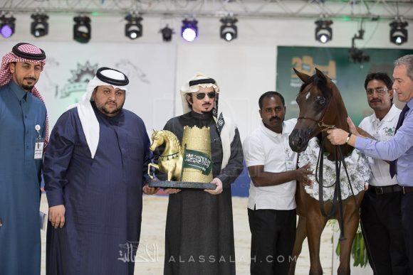 27بطولة الرياض