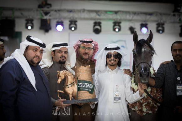 28بطولة الرياض