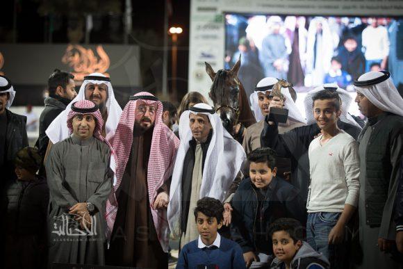 البرونز: سلطانة العرجا (ايه جيريكو x بي ايه بيرديتا) عبد العزيز الشريان – الكويت