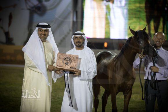 رامي البداير (اف ايه الرشيم x مرامي البداير) مربط البداير – الإمارات