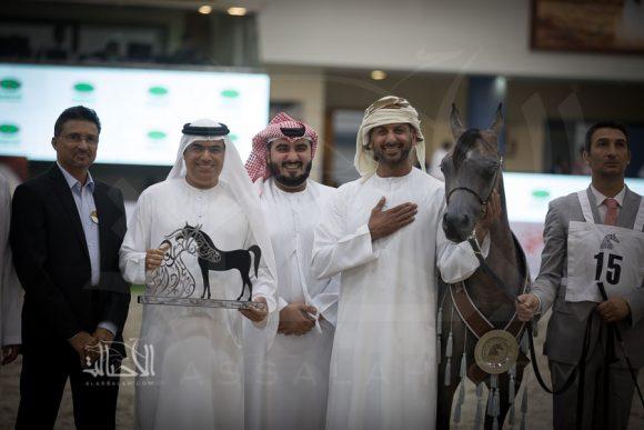 دي غالية (اف ايه الرشيم x دي اغادير) مربط دبي – الإمارات