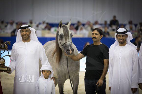 كيه ايه نبراس (شانقهاي إي ايه x ع ج نزوة) خالد غانم مبارك العميري – الامارات