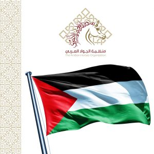 """منظمة """"الجواد العربي"""" توافق بالإجماع على عضوية الاتحاد الفلسطيني للفروسية"""