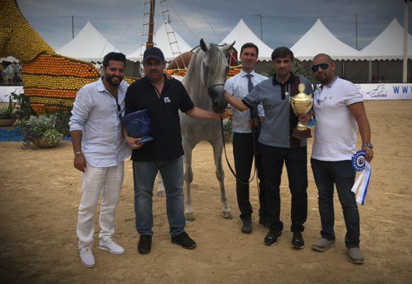 نتائج اليوم الأول من بطولة منتون الدولية ٢٠١٨ لجمال الخيل العربية