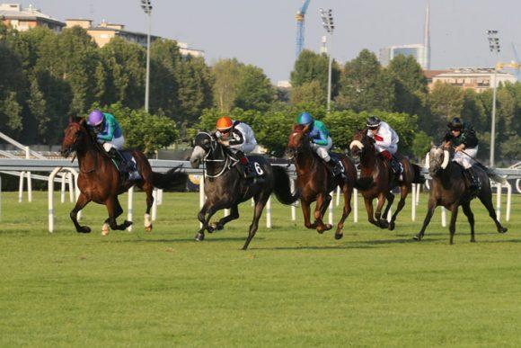 """""""فزاع الخالدية"""" يتوج بكأس رئيس دولة الامارات للخيول العربية في ايطاليا بزمن قياسي"""