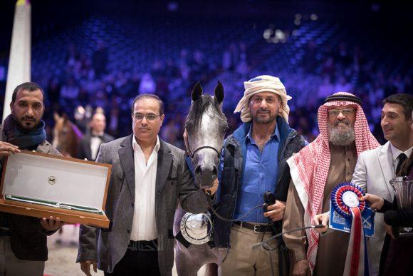 : دي شيهانة (اف ايه الرشيمxدي شهلة) 91.38 نقطة، مربط دبي – الإمارات