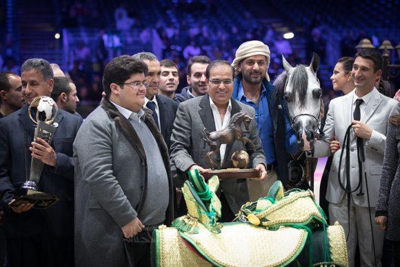 : دي سراج (اف ايه رشيم xليدي فيرونيكا) مربط دبي – الإمارات