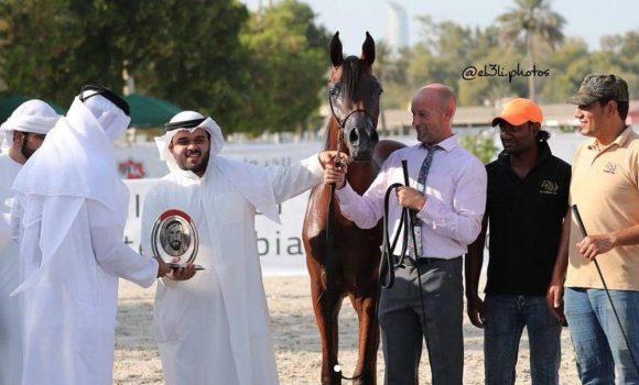 «اس كيو شداد» يحقق البرونز لمربط الصقران في بطولة الإمارات لمربي الخيل 2018