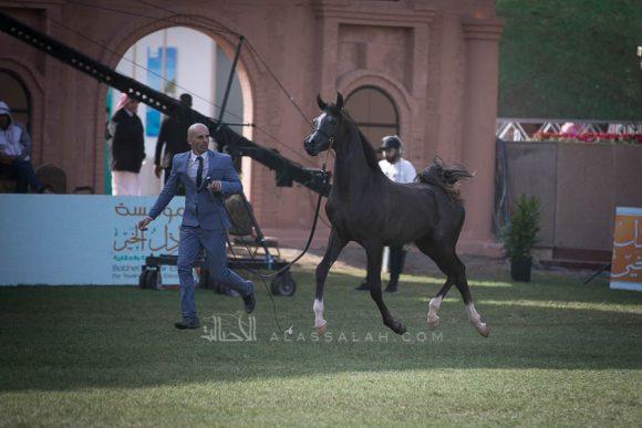 الأمير سلطان الخالديةISSS2506