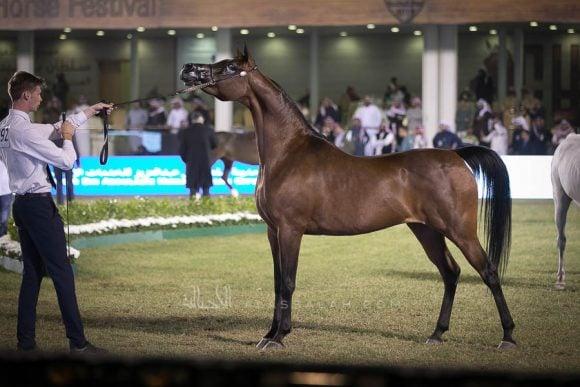 الأمير سلطان الخالديةISSS2985