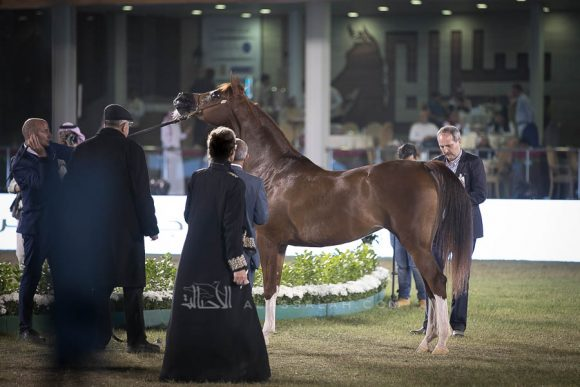 الأمير سلطان الخالديةISSS2997