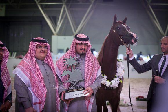 مشعل ايه ام (ابهاء قطر x سارة المحمدية) الأمير فيصل بن سعد بن سعود بن فيصل بن عبدالعزيز