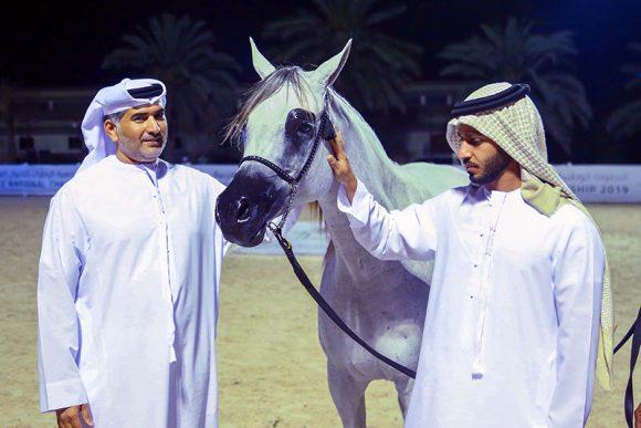 ختام فعاليات البطولة الوطنية 2019 لجمعية الإمارات للخيول العربية – النتائج النهائية