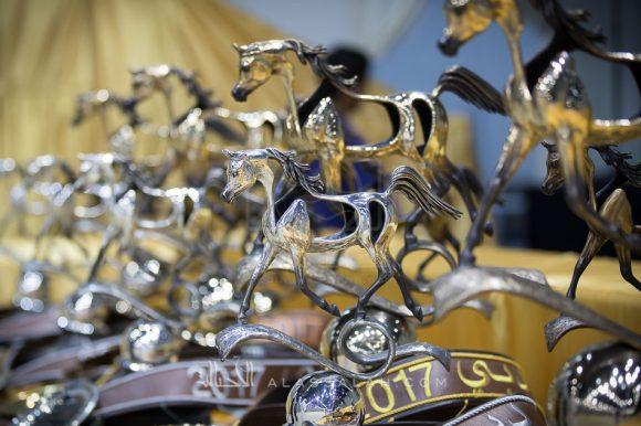 بطولة دبي الدولية للجواد العربي 2019 تنطلق يوم الخميس المقبلبمشاركة 221 خيلا