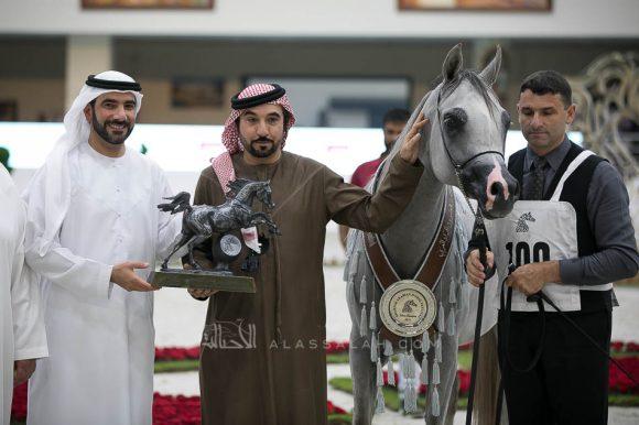 آر كي سديم (ماكد مونيسكيون x بي في اسبيشلي ستيفانا) مربط جمال محمد صالح البلوشي- الإمارات