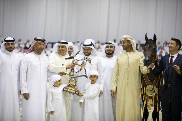 مربط دبي يتألق بذهبية وفضيتان في بطولة دبي الدولية 2019 للجواد العربي
