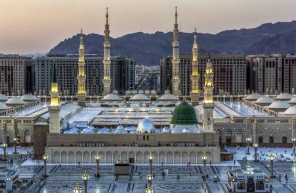 أرض الفرسان والفروسية.. المدينة المنورة تستعد لإقامة أول بطولة لجمال الخيل العربية