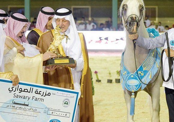 خيول الخالدية تحصد نصف الألقاب الذهبية في بطولة مكة المكرمة ٢٠١٩