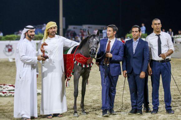 «دبي» يحقق فضيتان في مهرجان الشارقة 2019 – الإنتاج المحلي