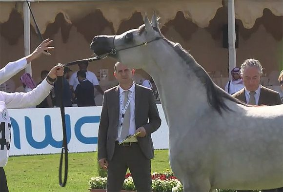نتائج اليوم الأول لبطولة مركز الملك عبدالعزيز الدولية الرابعة 2019