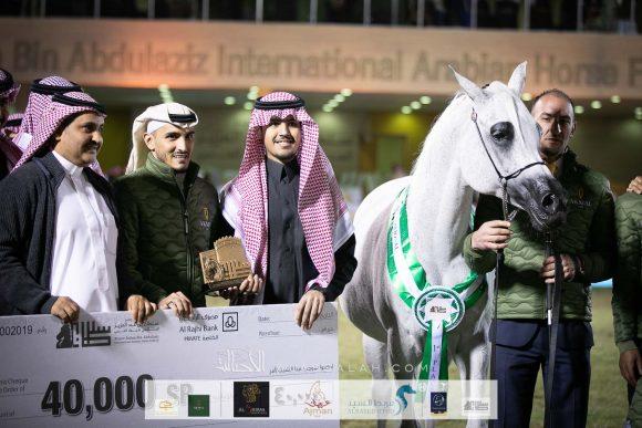 """""""بيبيتا"""" تواصل توهجها وتحقق أعلى نقاط البطولة لليوم الأول من مهرجان الأمير سلطان العالمي 2020 للجواد العربي"""
