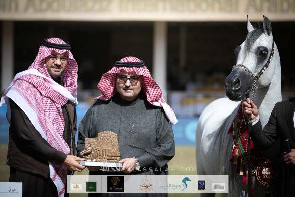 ثنائية لمربط عذبة في منافسات الخيول السعودية ضمن مهرجان الأمير سلطان العالمي 2020 – النتائج النهائية