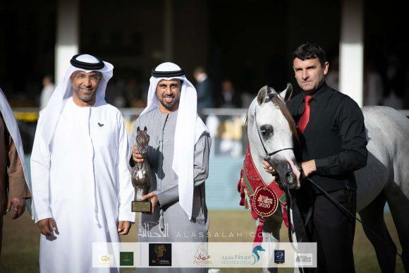 ذهبية وفضيتان ينتزعها «عجمان» في بطولة الأمير سلطان العالمية للجواد العربي 2020